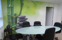 mur-tendu-imprime-bureau-professionnels-alpes-plafond